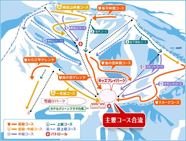 【ゲレンデレポート】白馬コルチナスキー場でツリーラン&圧倒的パウダースノー!