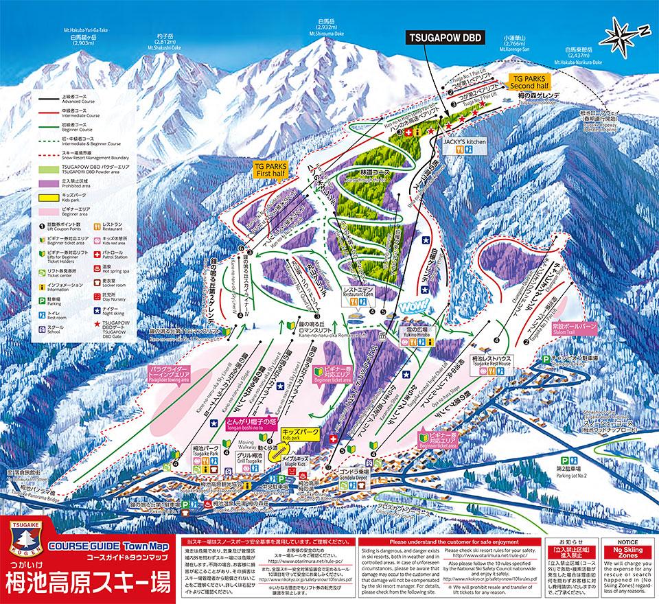 【ゲレンデレポート】栂池高原スキー場は超幅広の鐘の鳴る丘ゲレンデがデビューに最適!